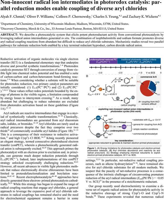 Thumbnail image of Non-innocent radical ion intermediates in photoredox catalysis.pdf