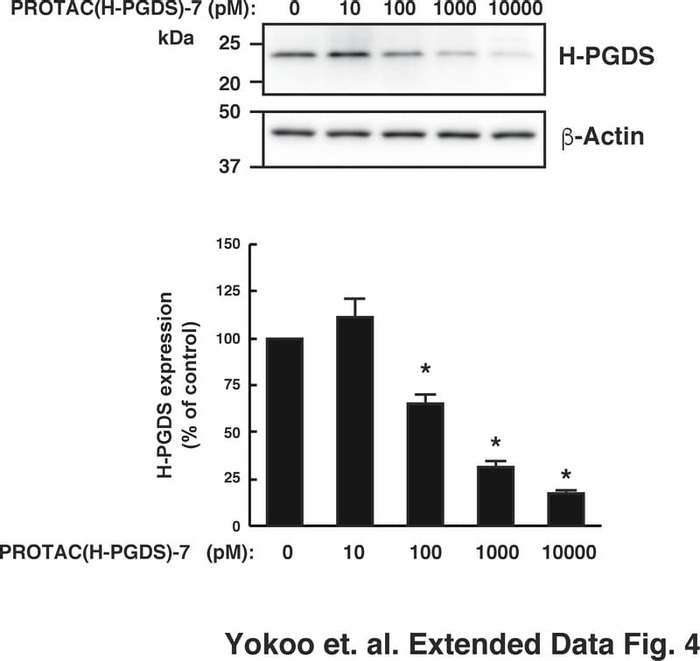 Thumbnail image of Extended Data Fig.4.pdf