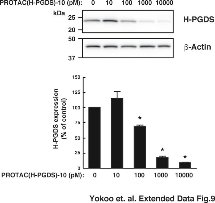 Thumbnail image of Extended Data Fig.9.pdf