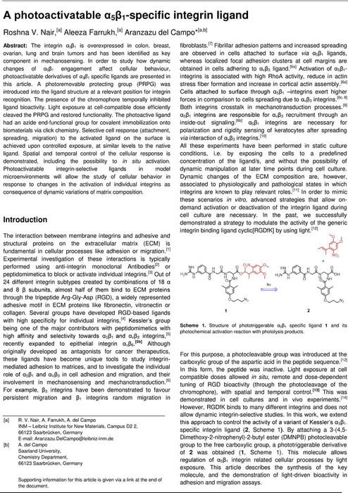 Thumbnail image of Aphotoactivatable51specificintegrinliganddelCampoChemRxiv.pdf