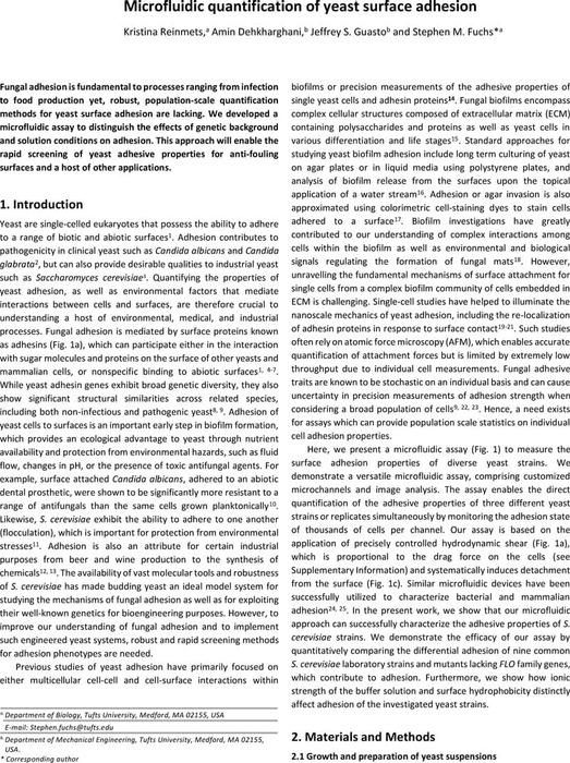 Thumbnail image of LOACdraftChemrXiv.pdf