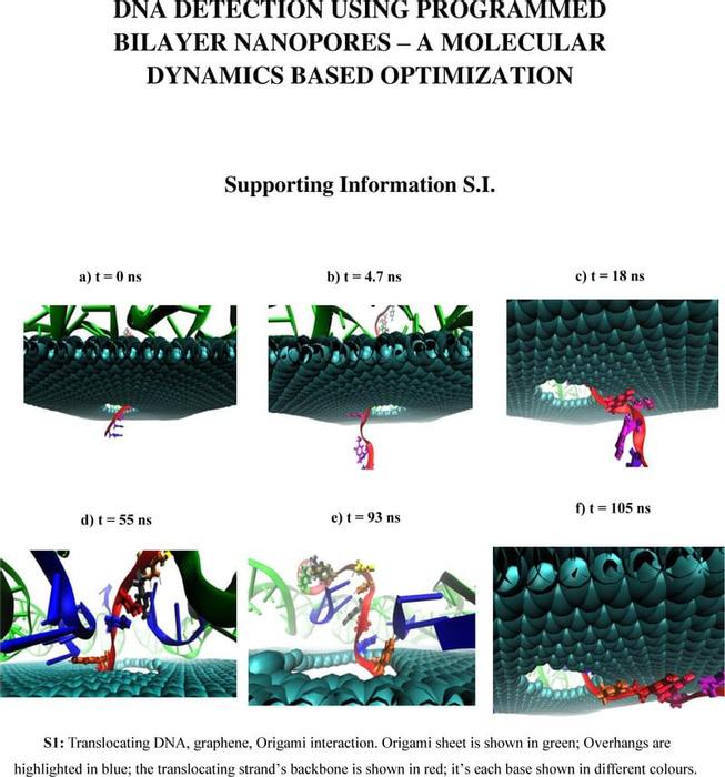 Thumbnail image of Nanopore_SI.pdf