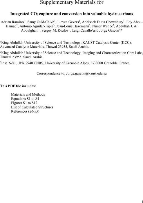 Thumbnail image of Ramirez et al SI.pdf