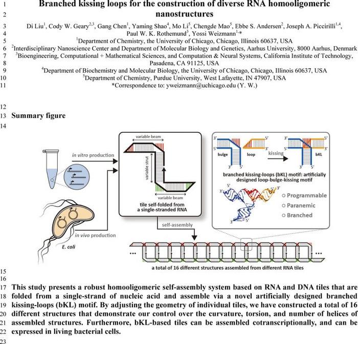Thumbnail image of RNA-bKL_Manuscript.pdf