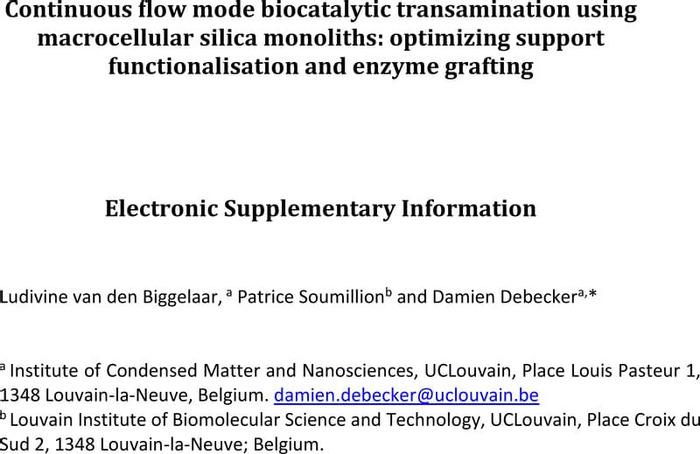 Thumbnail image of van den Biggelaar Debecker Flow transamination macrocellular silica monolith ESI.pdf