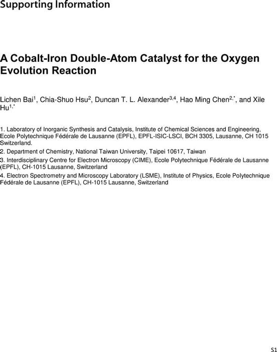 Thumbnail image of CoFe double atom-SI-preprint-Hu3.pdf