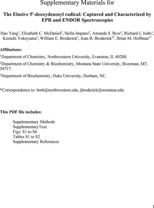 Thumbnail image of dAdo_SI_chemRxiv.pdf
