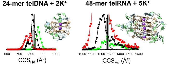 Thumbnail image of TOC.tiff