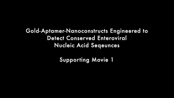 Thumbnail image of Gold-Aptamer-Nanoconstructs - Supporting Movie 1.mp4