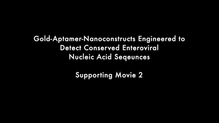 Thumbnail image of Gold-Aptamer-Nanoconstructs - Supporting Movie 2.mp4