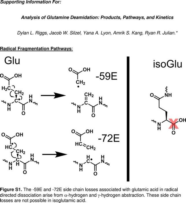 Thumbnail image of Gln SI.pdf