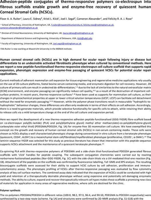 Thumbnail image of article for chemrxiv.pdf