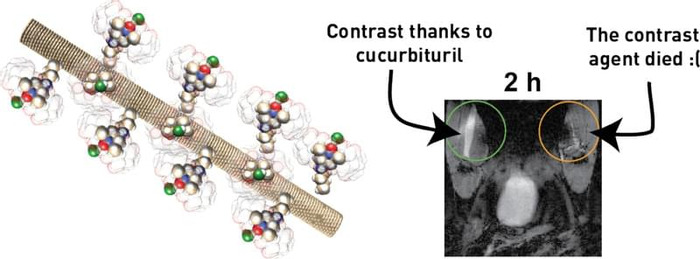 Thumbnail image of graphical abstract.pdf