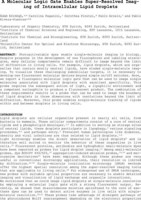 Thumbnail image of Eordogh-chemRxiv2019.pdf