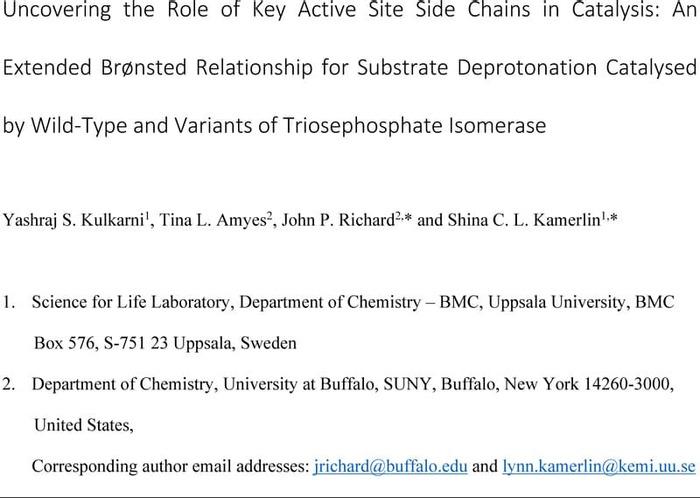 Thumbnail image of Kamerlin_Manuscript.pdf