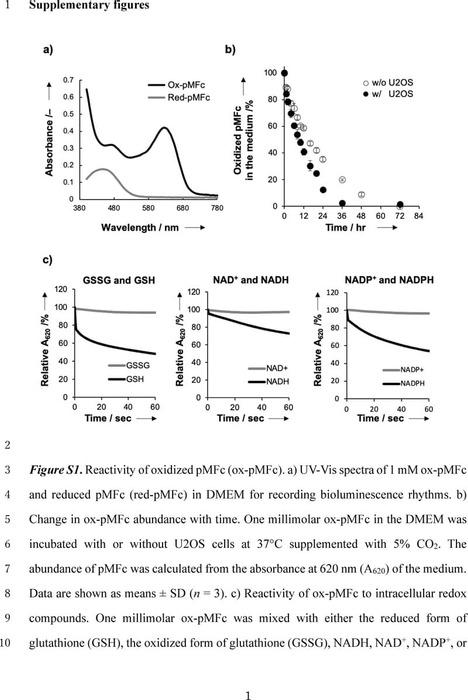 Thumbnail image of Ishikawa Supplementary materials for ChemRxiv.pdf