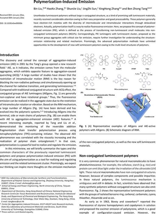 Thumbnail image of Polymerization-Induced Emission- -chemrxiv.pdf