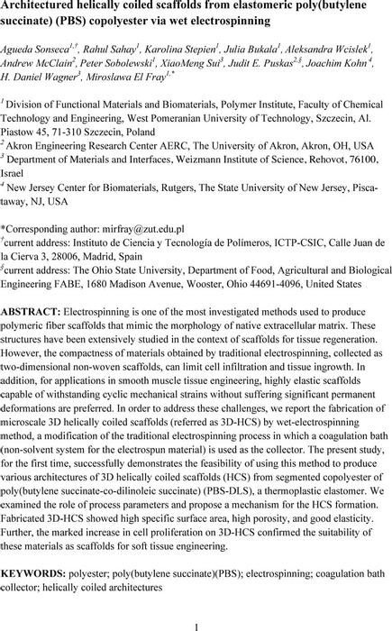 Thumbnail image of HCS_paper_CX_20190924.pdf