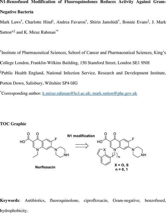 Thumbnail image of 10311686.v1.pdf