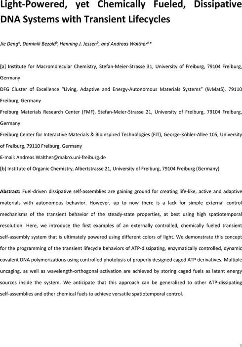 Thumbnail image of MS_SI_preprint.pdf