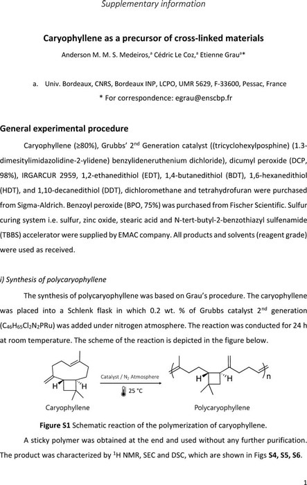 Thumbnail image of SI-PCaryo-03122019.pdf
