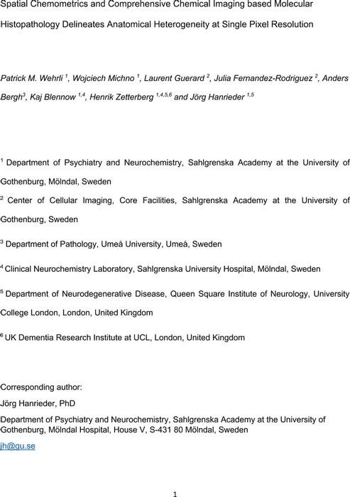 Thumbnail image of Wehrli_SPC_200204JH.pdf