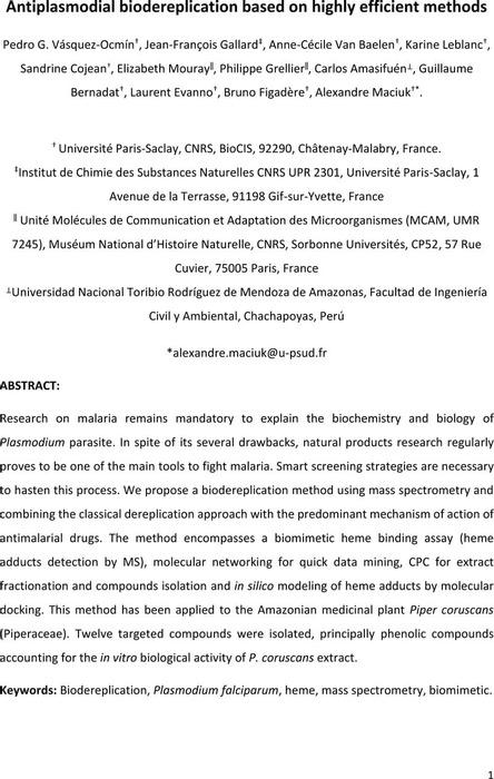 Thumbnail image of 200209_Bioderep-heme_preprint.pdf