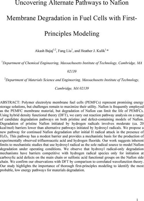 Thumbnail image of Nafion_v11.pdf