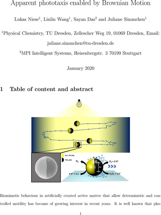 Thumbnail image of Niese_Apparent_phototaxis_enabled_by_BM.pdf