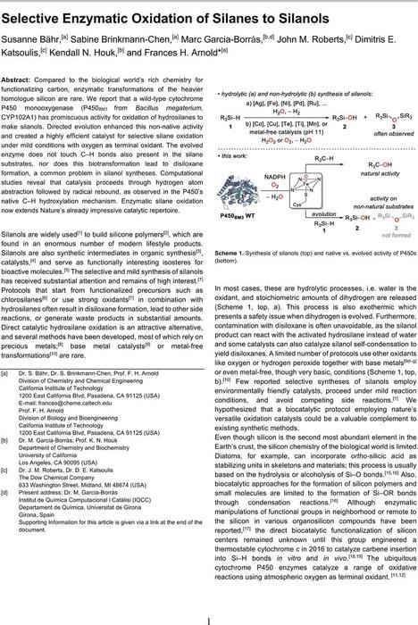 Thumbnail image of 20200317_SiOx.pdf