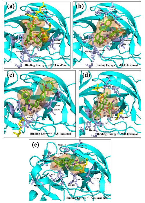Thumbnail image of Fig. 6.tiff