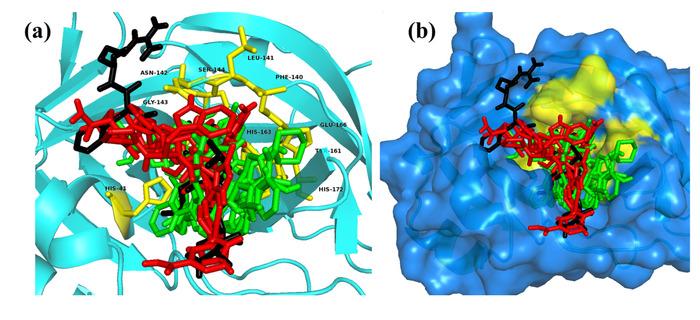 Thumbnail image of Fig. 4.tiff