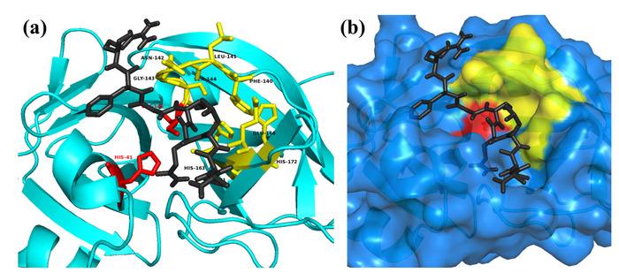 Thumbnail image of Fig. 5.tiff