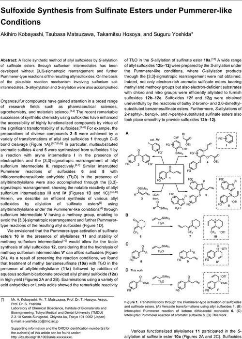 Thumbnail image of AKms0326-ChemRxiv.pdf