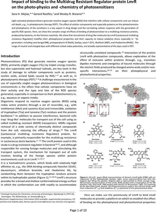 Thumbnail image of Chemrxiv_LmrR_manuscript.pdf