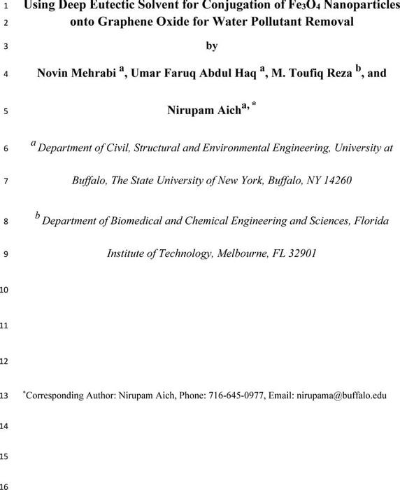 Thumbnail image of Manuscript_GO-DES-Fe3O4 Nanohybrid_Mehrabi and Aich et al._040620.pdf
