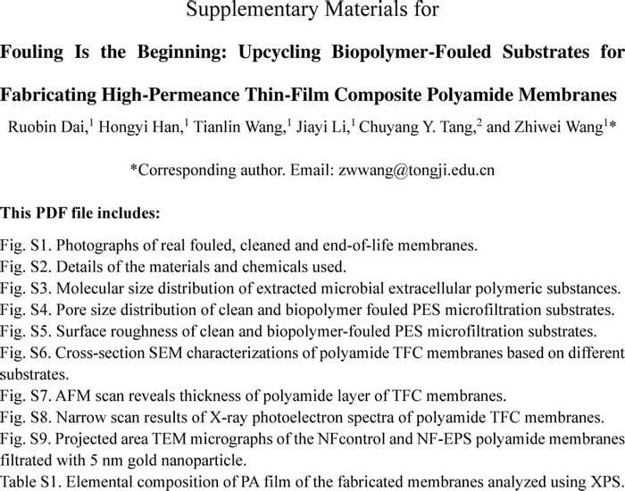 Thumbnail image of SA_SI_vf.pdf
