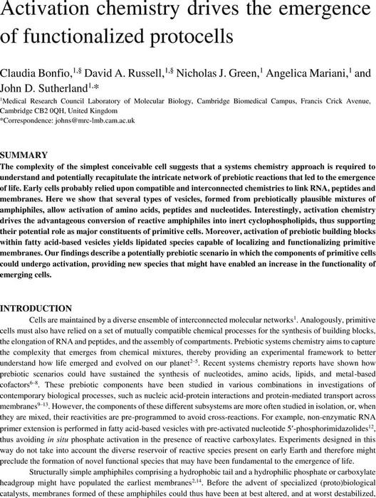 Thumbnail image of Bonfio et al_Chemrxiv.pdf