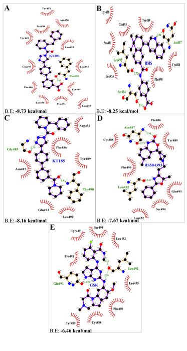 Thumbnail image of Figure 6.tiff