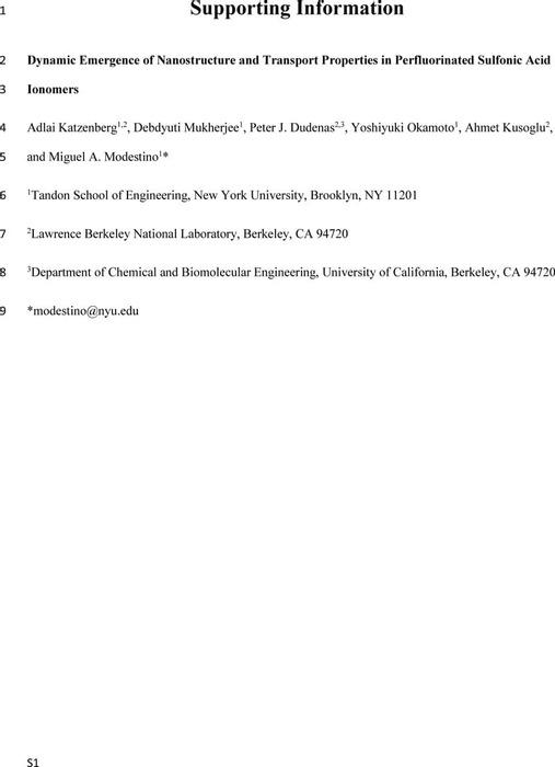 Thumbnail image of SI-v1.pdf