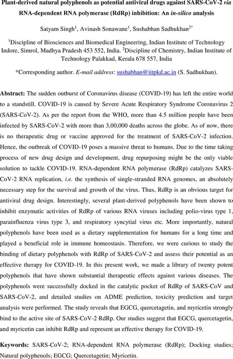 Thumbnail image of RdRp_Preprint_Manuscript_Combined.pdf