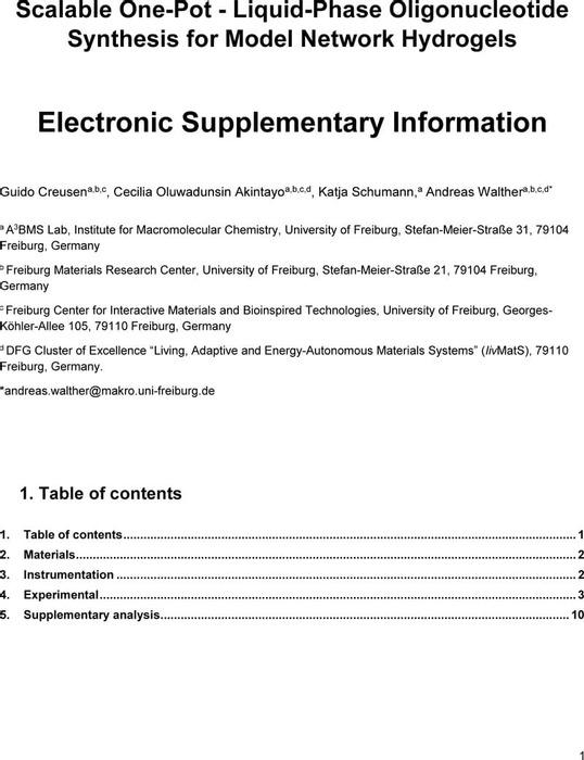 Thumbnail image of ESI final.pdf