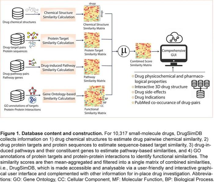 Thumbnail image of Figure 1.pdf