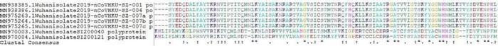 Thumbnail image of Supplementaty Fig 1.pdf
