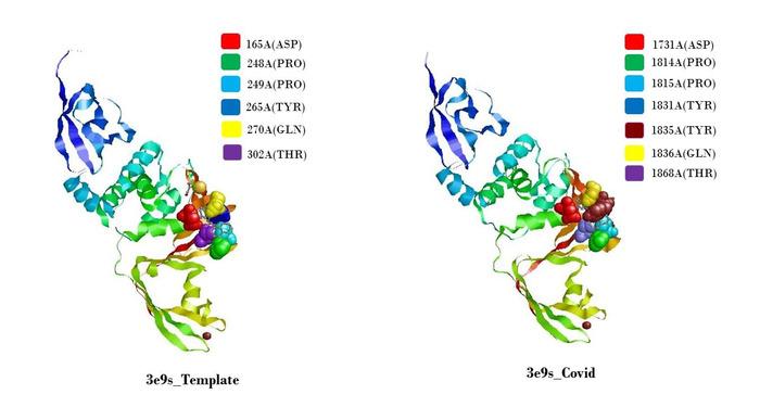 Thumbnail image of Figure 12.jpg