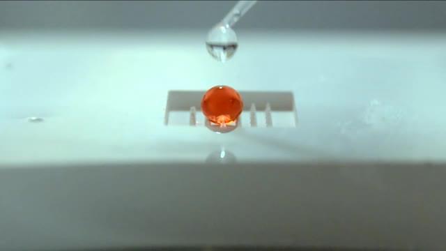 Thumbnail image of MovieS3.mp4
