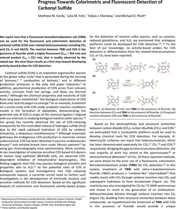 Thumbnail image of Manuscript-ChemRxiv.pdf
