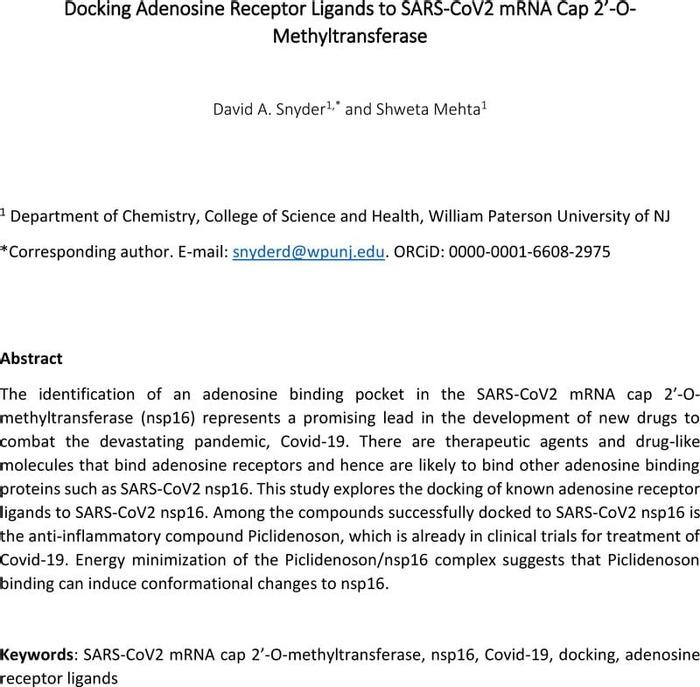 Thumbnail image of AdenosineReceptorBinders_BindingNSP16_forChemRxiv_v2.pdf