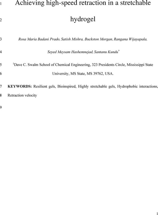 Thumbnail image of Badani_et_al 2020.pdf