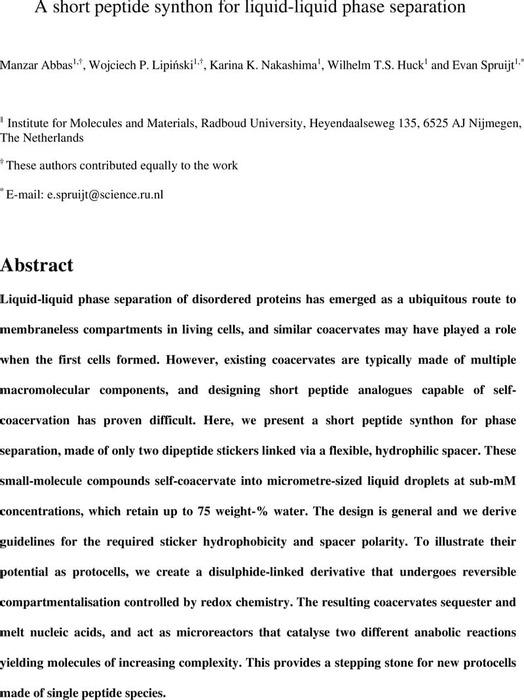 Thumbnail image of PepSynthonLLPSv1.pdf